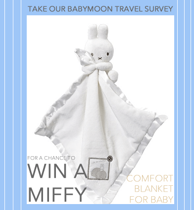 win a miffy