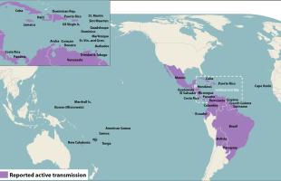 Babymoons and the Zika Virus
